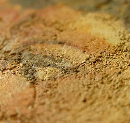 fresco-detail
